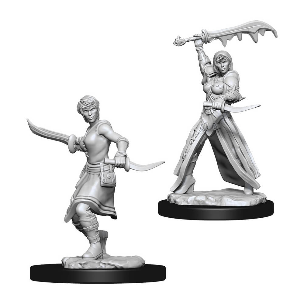 D&D Minis - Female Human Rogue - Imaginary Adventures