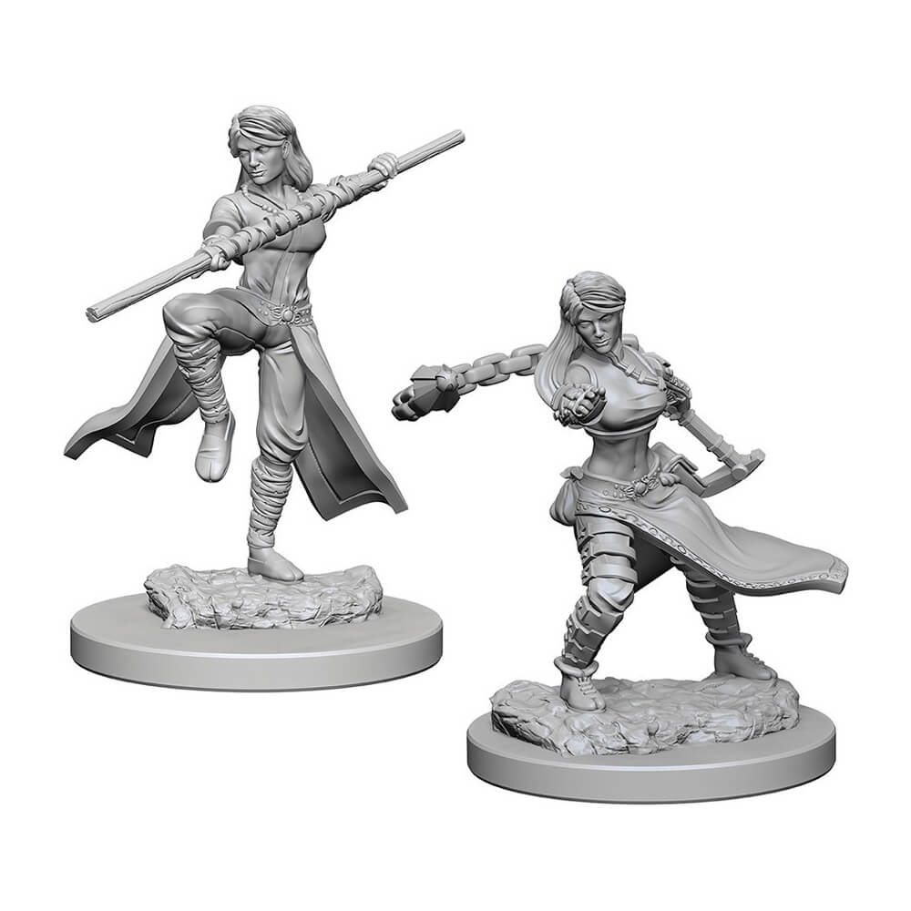 D&D Minis - Human Female Monk with Braid - Imaginary Adventures
