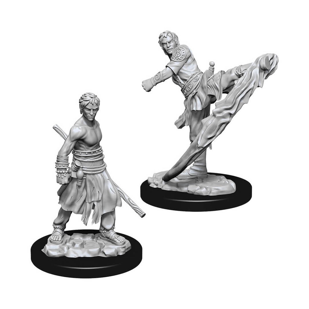 D&D Minis - Male Half-Elf Monk - Imaginary Adventures