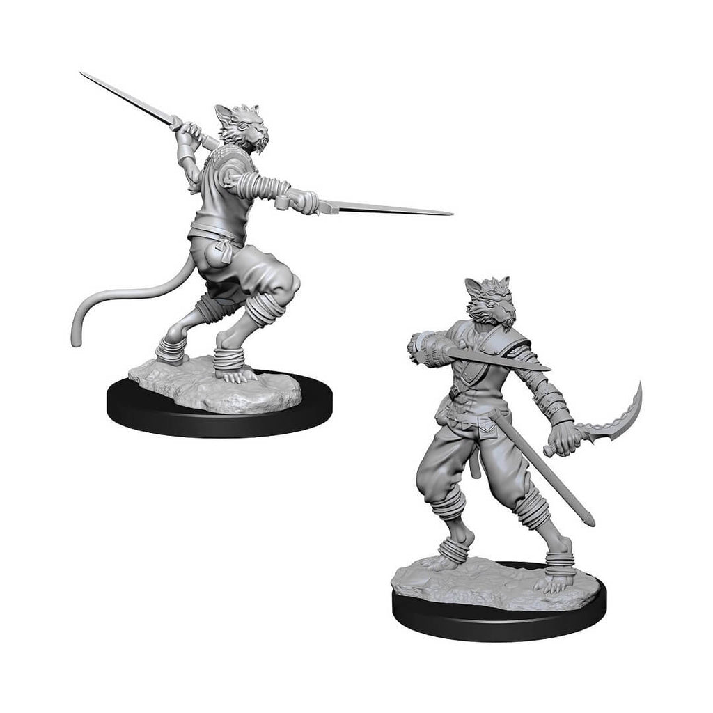 D&D Minis - Tabaxi Male Rogue - Imaginary Adventures