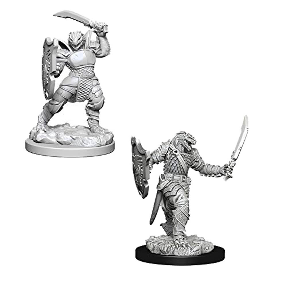 D&D Minis - Dragonborn Female Paladin - Imaginary Adventures