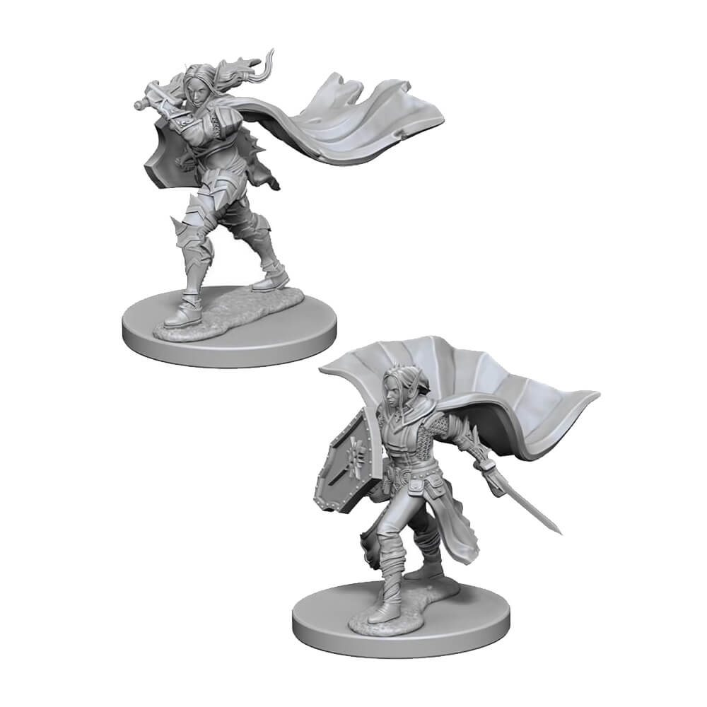Pathfinder Minis - Elf Female Paladin - Imaginary Adventures