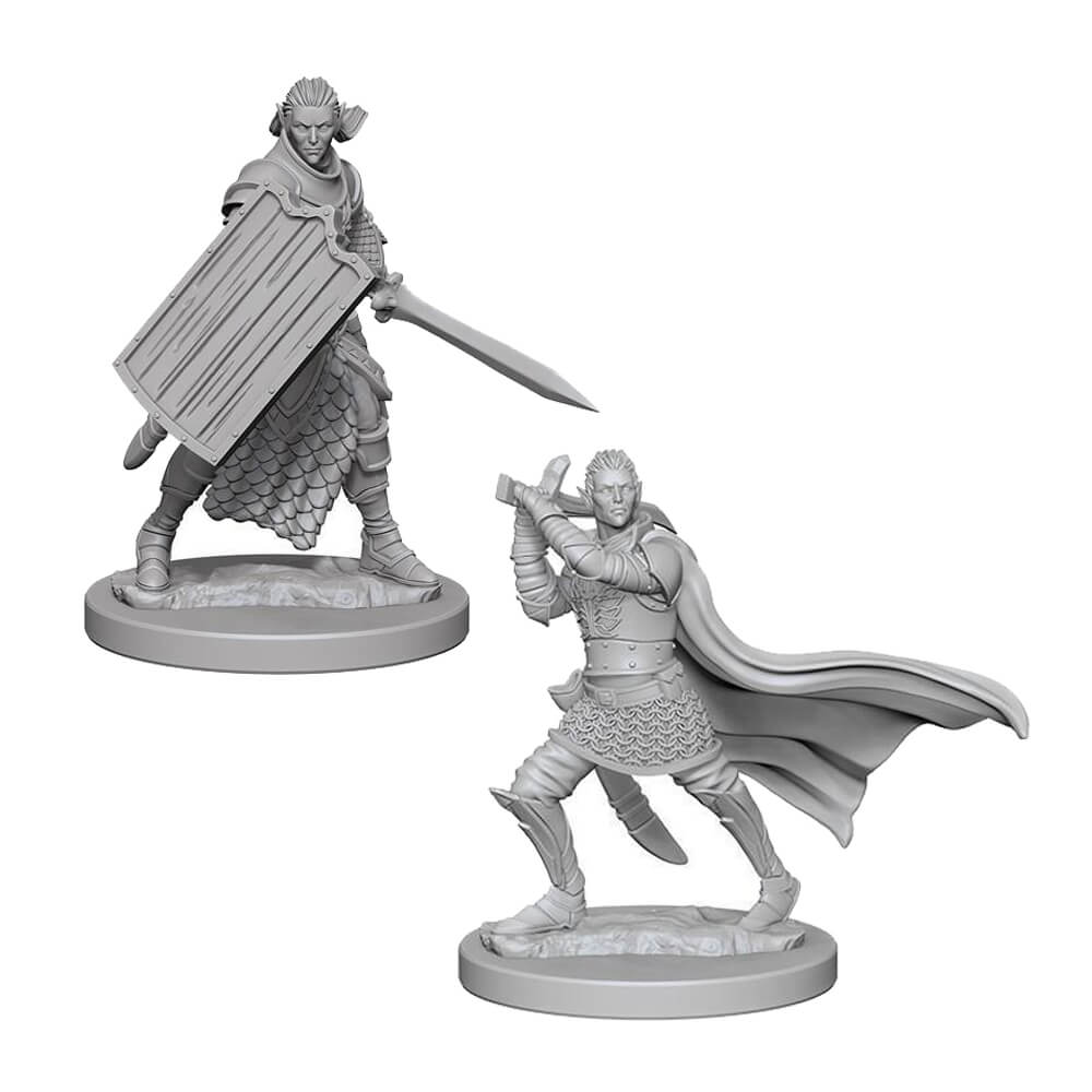 Pathfinder Minis - Elf Male Paladin - Imaginary Adventures
