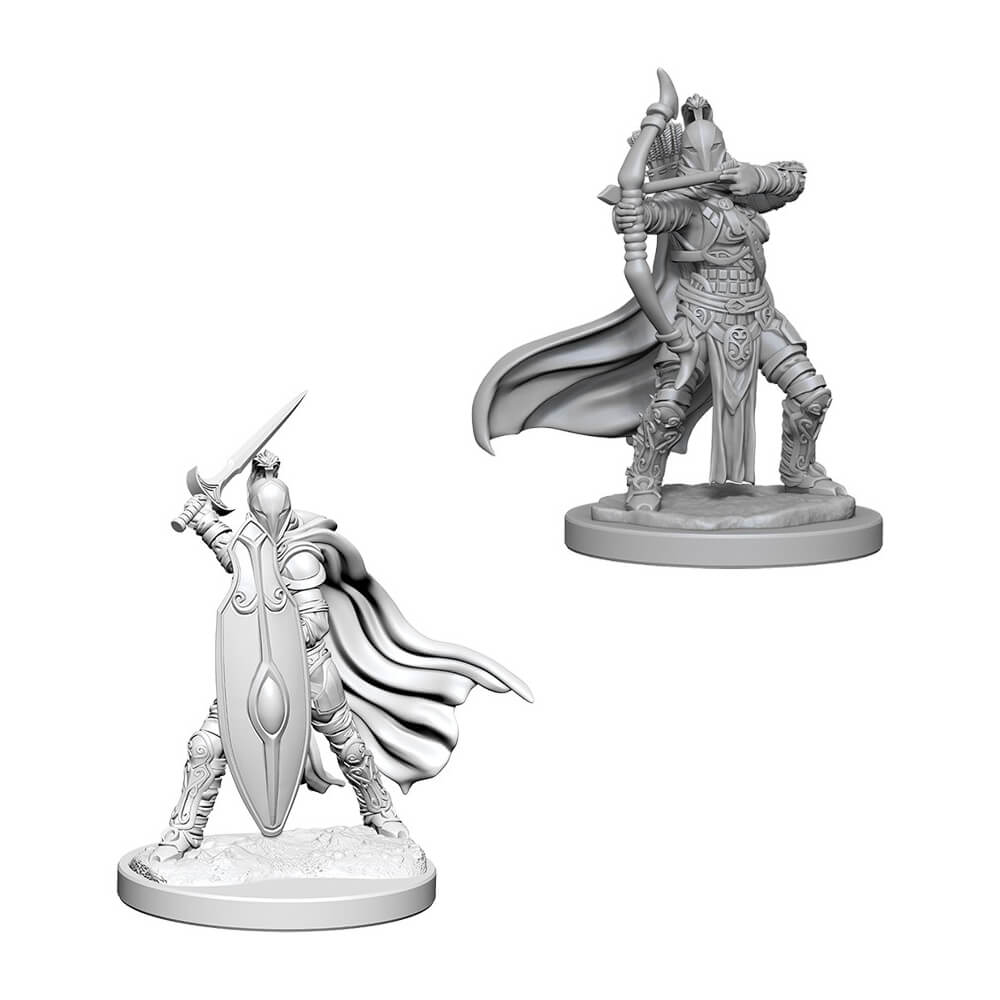 Pathfinder Minis - Female Knights / Gray Maidens - Imaginary Adventures