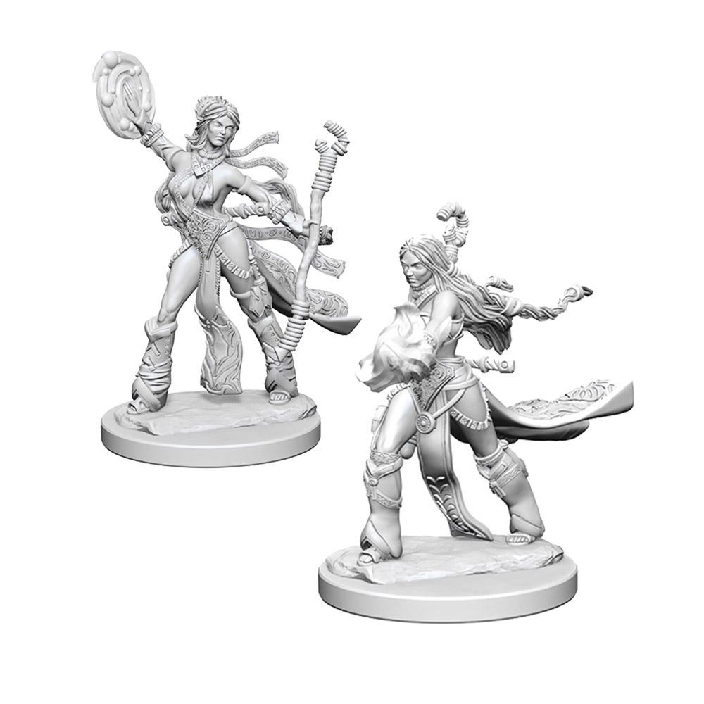 Pathfinder: Deep Cuts Unpainted Miniatures: Human Female Sorcerer - Imaginary Adventures