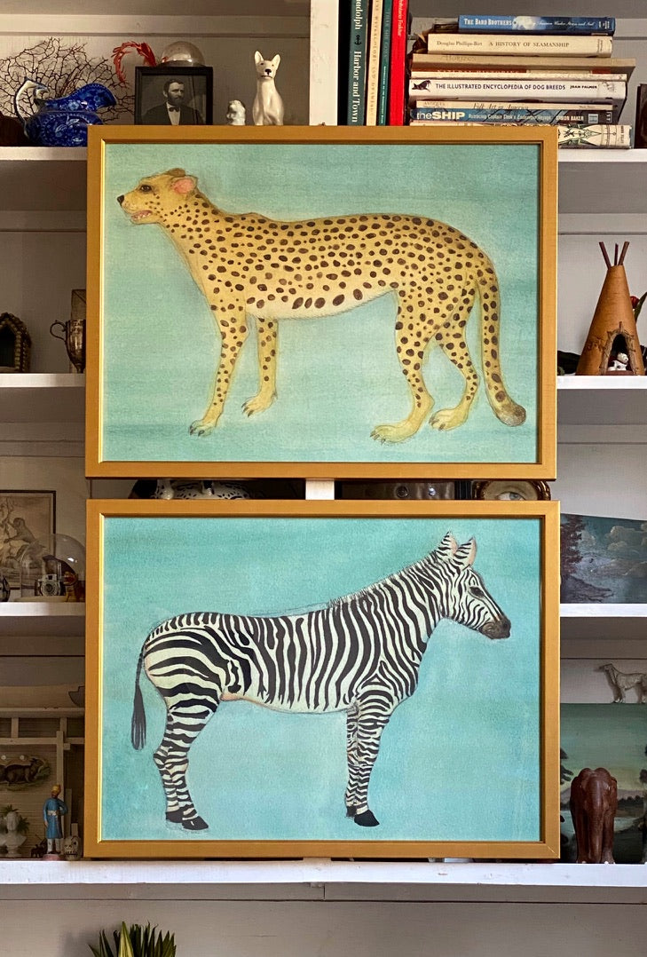 'Cheetah' and 'Zebra'