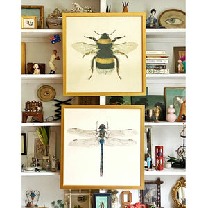 'Bumblebee' and 'Dragonfly' -per piece