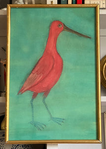 'Longbill Red Egret'