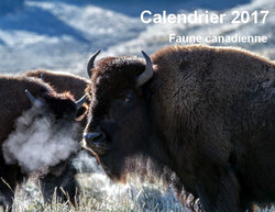 CLD012 Faune canadienne
