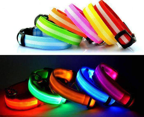 Image of LED Dog Collar