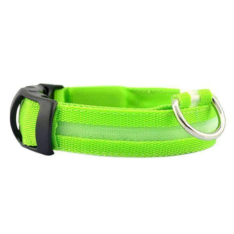 Image of All For Hobbies Green / Small LED Dog Collar