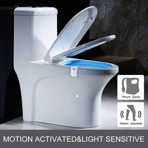 All For Hobbies LED Toilet Light