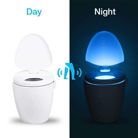 LED Toilet Light