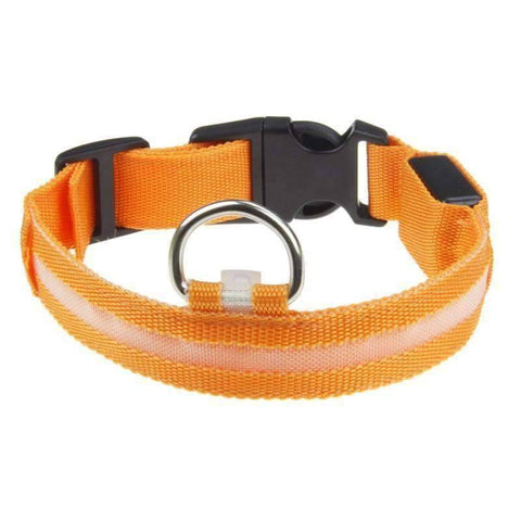 All For Hobbies Orange / Small LED Dog Collar