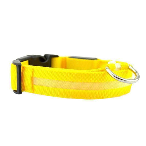 All For Hobbies Yellow / Small LED Dog Collar