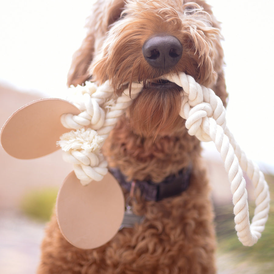 Natural Cotton Rope + Leather Tug Toy - The Biggie Kobe