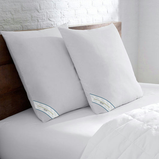 Set of 2 Beauty Sleep Down Alternative Euro Square Pillows 26 x 26