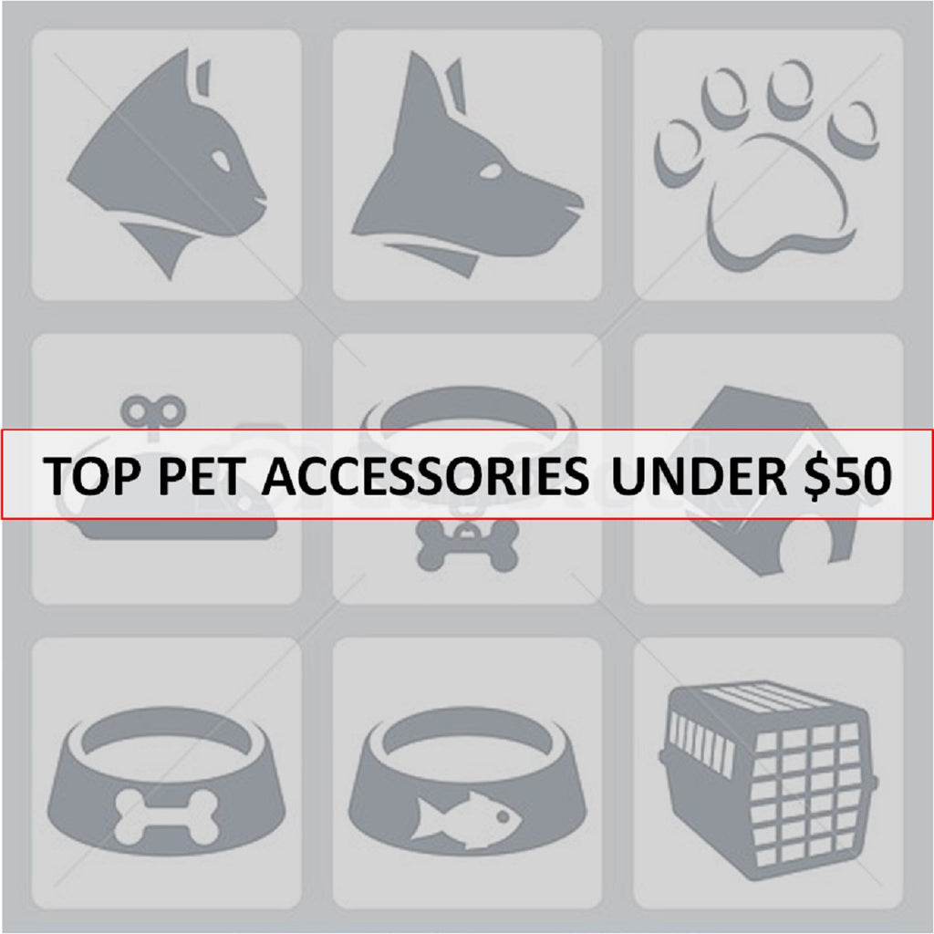 Must Have Dog Accessories Under $50