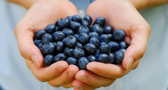 Will an Acai Berry Cleanse Benefit your Health?