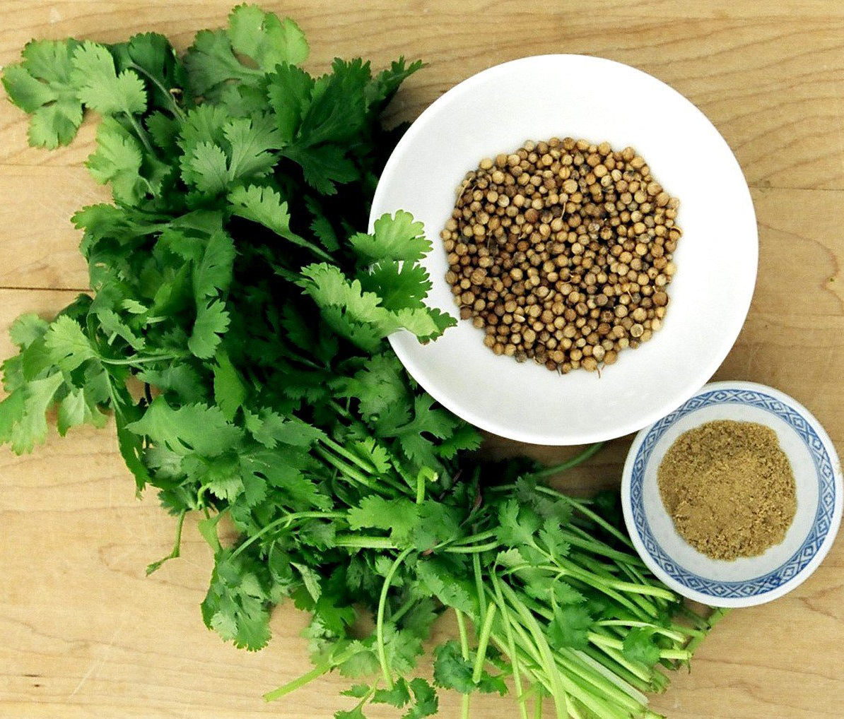 Coriander Seed Oil; How Can It Be Good for You?