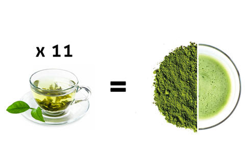 matcha vs tea