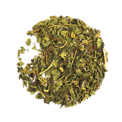 Bondi Organic Paw Paw Leaf Tea-Bondi Beach Tea Co