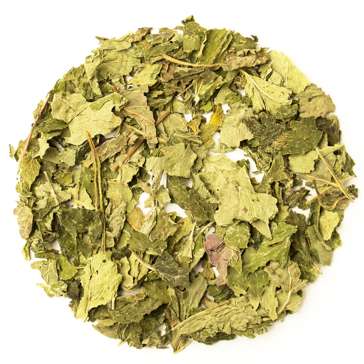 Lemon Balm Leaves Tea - Organic