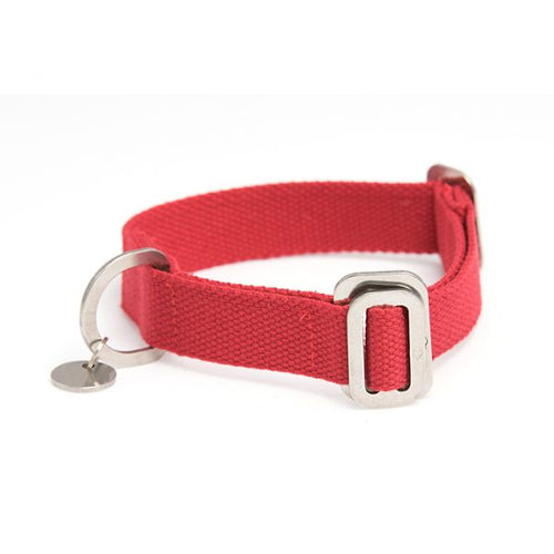 Red Hindquarters Dog Collar