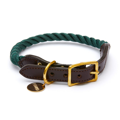 Found My Animal Collar - Hunter Green