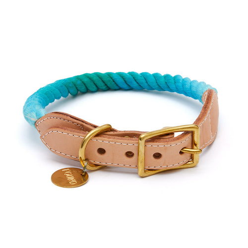 Found My Animal Collar - Teal Fade
