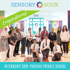Internship 2019: Phoenix Private School