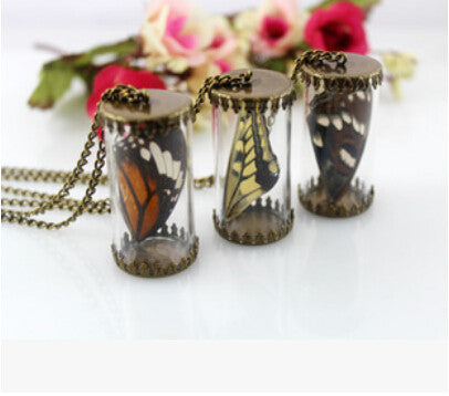 10pcs/lot Natural real butterfly specimens necklace Cylindrical glass pendants necklace bronze tone - onlinejewelleryshopaus