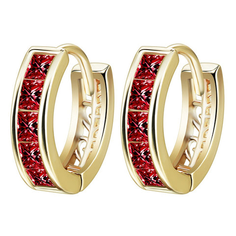 10pcs/lot  New  Gold Plated Bride Earrings Elegant Jewelry White/  Red Crystal Zirconia  Hoop Earrings For Women - onlinejewelleryshopaus