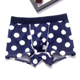 Underwear in Cotton Boxer Shorts sizes up to XL