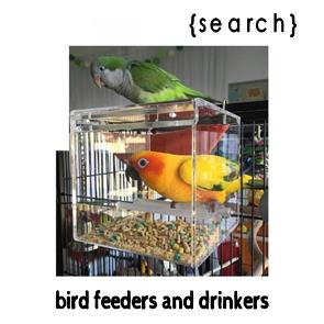Bird Feeders + Drinkers