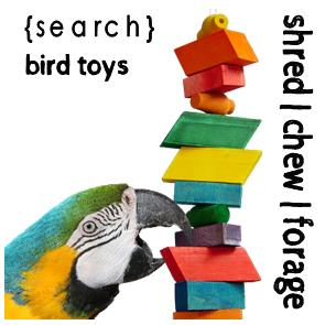 Toys, Chews + Foraging