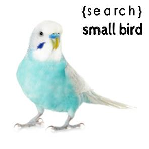 Small Bird Products