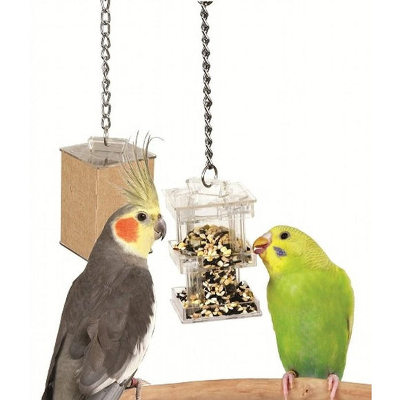 Creative Foraging Box Feeder