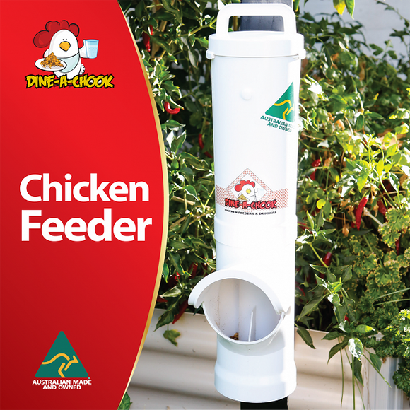 Dine a Chook 3.5lt Feeder