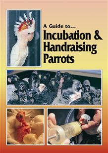 A Guide to Incubation and Handraising Parrots