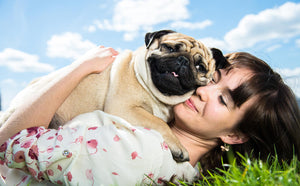How your Dog can benefit from simple clothing