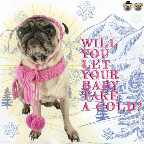 Will you let your Pug take a cold?