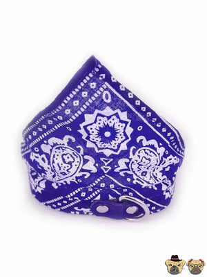Bandanna For Dogs - Blue Collars