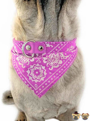 Bandanna For Dogs - Pink Collars