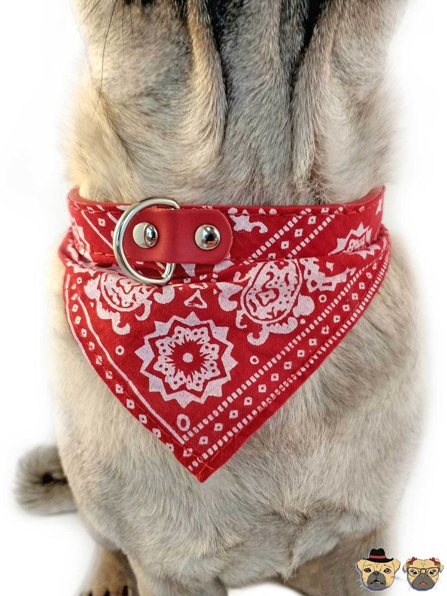 Bandanna For Dogs - Red Collars