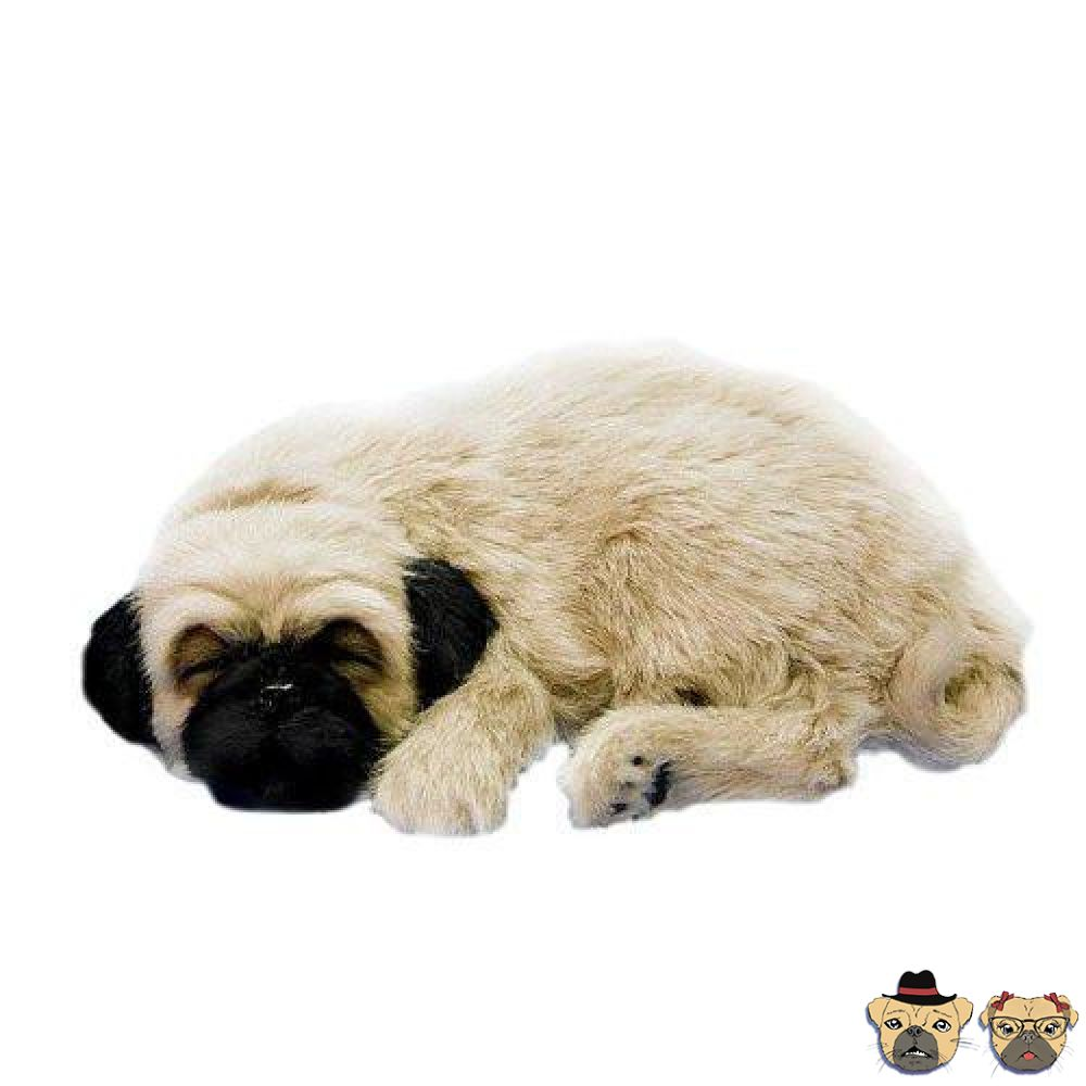 Exclusive dog items for men mr mrs pug breathing pug puppy doll nvjuhfo Images