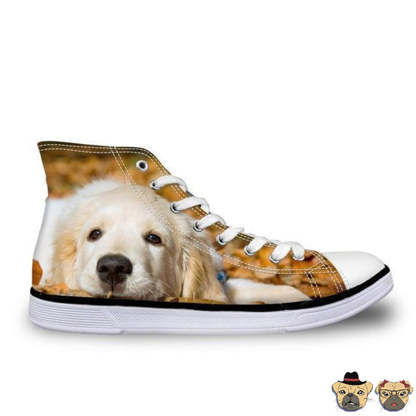 Golden Puppy High Sneakers 11 Shoes