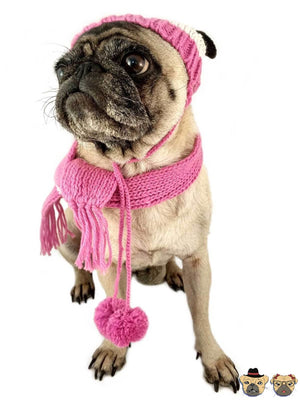 Knitted Set For Dogs Clothing