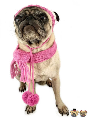 Knitted Set For Dogs Pink / Xs Clothing