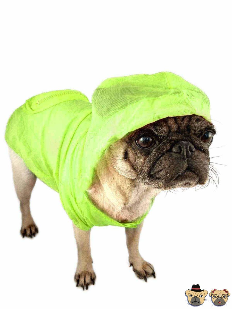 Raincoat For Dogs - Green Clothing
